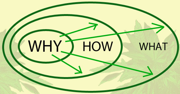 why_how_what - teamradar